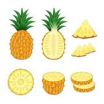 Conjunto de abacaxi inteiro e fatias de ilustração vector