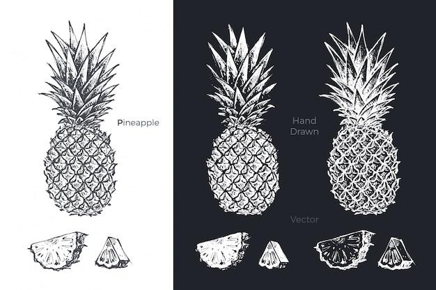 Conjunto de abacaxi mão desenhada