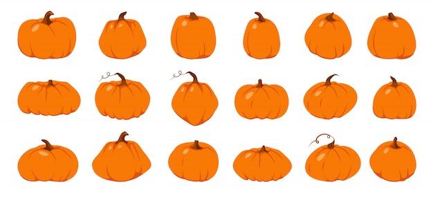 Conjunto de abóbora de outono. dia das bruxas. colheita agrícola, ilustração