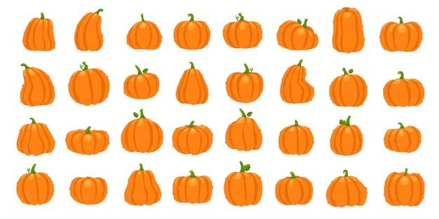 Conjunto de abóbora laranja dos desenhos animados