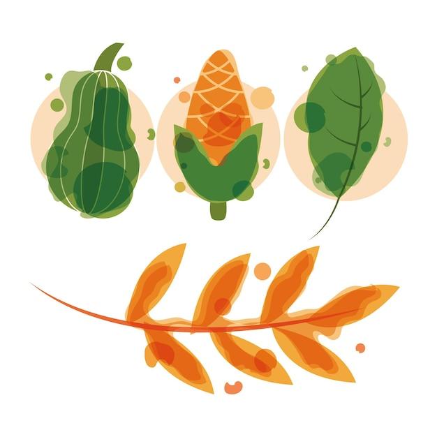 Conjunto de abóboras e folhas de milho