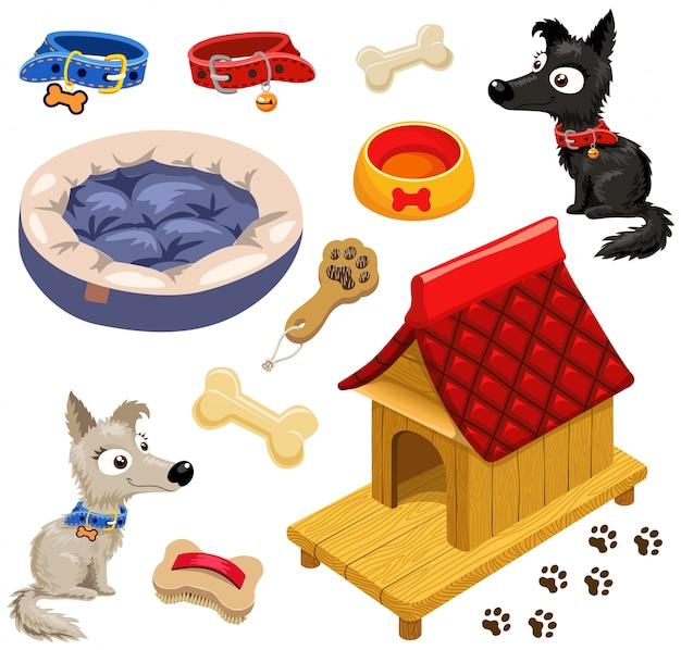 Conjunto de acessórios para cães.
