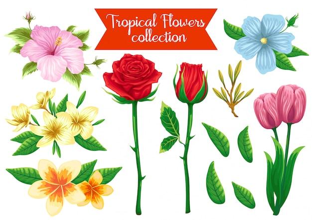 Conjunto de ações vetor de ilustração de objeto de flores