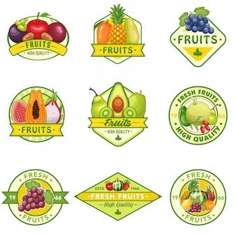 Conjunto de ações vetor de logotipo de frutas