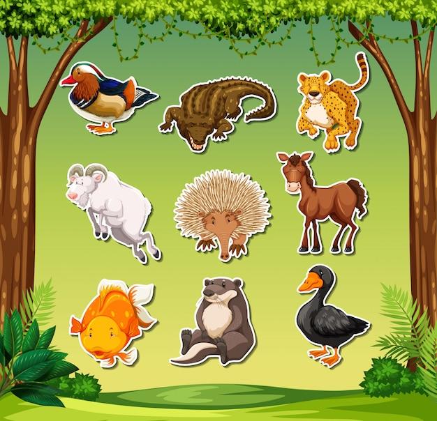 Conjunto de adesivos animais