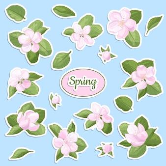 Conjunto de adesivos com flor de maçã na primavera, delicadas flores rosa e botões