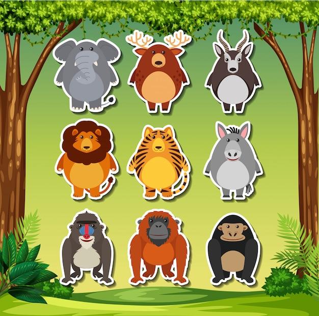 Conjunto de adesivos de animais dos desenhos animados