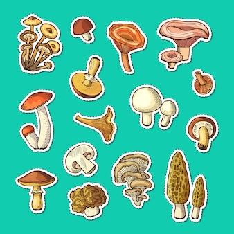 Conjunto de adesivos de cogumelos mão desenhada