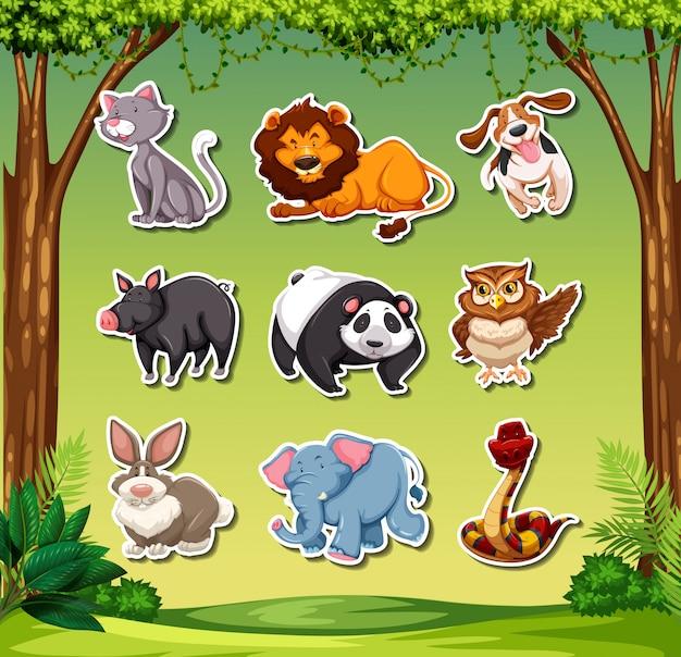 Conjunto de adesivos diferentes animais