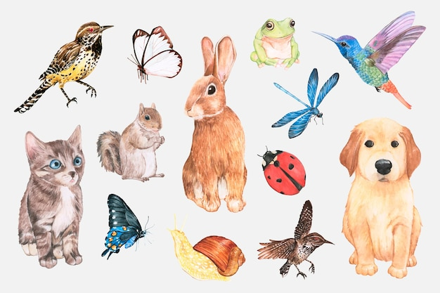 Conjunto de adesivos fofos em aquarela de animais e insetos