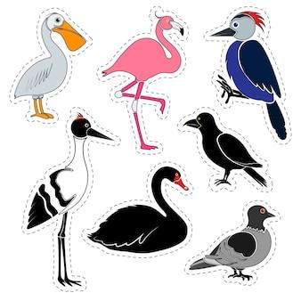Conjunto de adesivos. pássaros diferentes isolados no espaço em branco.
