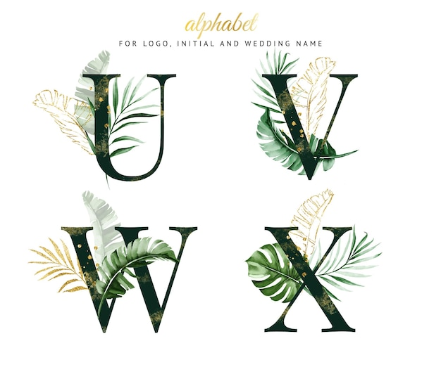 Conjunto de alfabeto de u, v, w, x com aquarela tropical verde. para logotipo, cartões, branding, etc.
