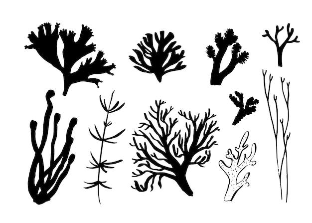Conjunto de algas e corais de algas. diferentes silhuetas da fauna subaquática. ilustração em vetor preto