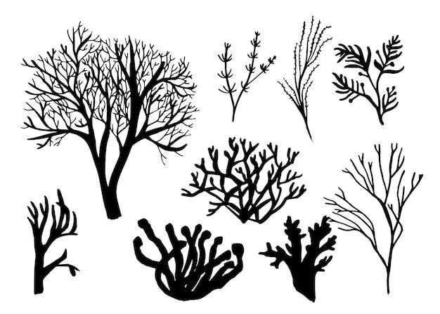 Conjunto de algas marinhas, corais e algas diferentes silhuetas da fauna subaquática ilustração preta