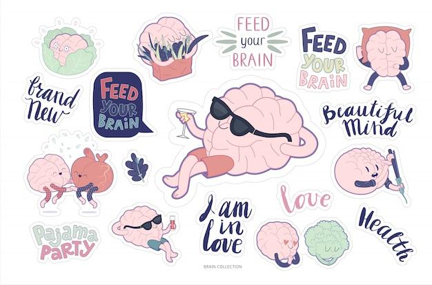 Conjunto de alimentação e lazer de adesivos para o cérebro