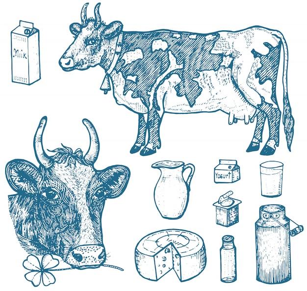Conjunto de alimentos com leite, produtos lácteos, iogurte e queijo, sorvete, garrafa, jarro, manteiga e batido batido.