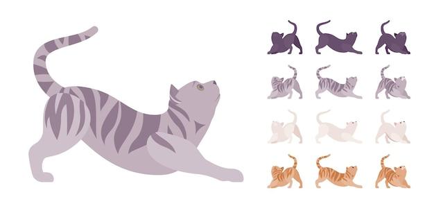 Conjunto de alongamento de gato de pedigree listrado branco, preto, laranja, cinza. gatinho ativo e saudável com pelo bonito, animal de estimação engraçado e fofo, companheiro lúdico em casa. vistas diferentes da ilustração vetorial de estilo simples dos desenhos animados