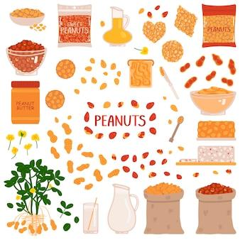 Conjunto de amendoim em um fundo branco. ilustração vetorial no estilo de desenho à mão livre.