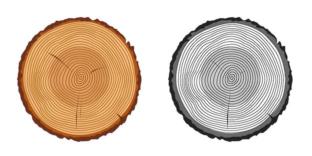 Conjunto de anéis de tronco de árvore cortado isolado de desenho animado