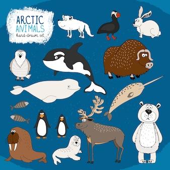 Conjunto de animais árticos desenhados à mão em um fundo azul frio com um urso polar