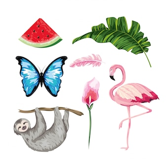 Conjunto de animais com melancia tropical e folhas com folhas