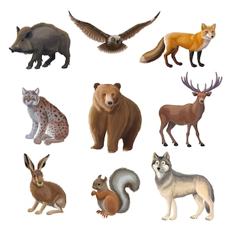 Conjunto de animais da floresta de desenho animado