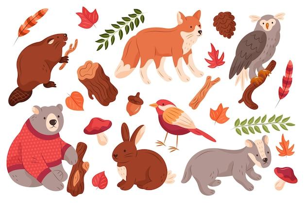 Conjunto de animais da floresta de outono desenhados à mão