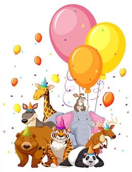 Conjunto de animais de aniversário