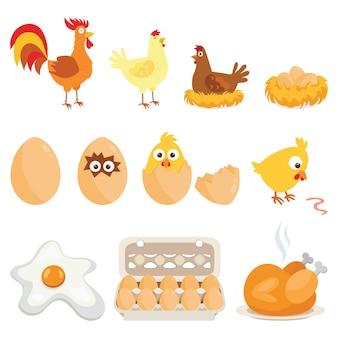 Conjunto de animais de fazenda, família de galinhas
