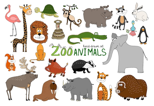 Conjunto de animais de zoológico desenhados à mão em branco
