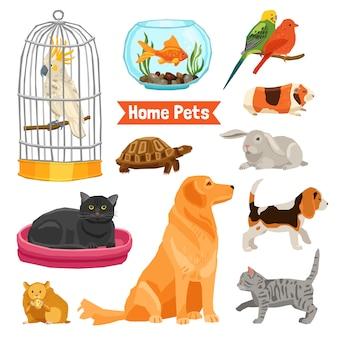 Conjunto de animais domésticos