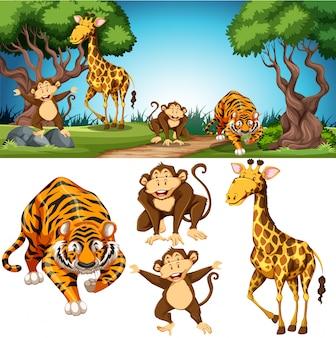 Conjunto de animais e cena de landscpae