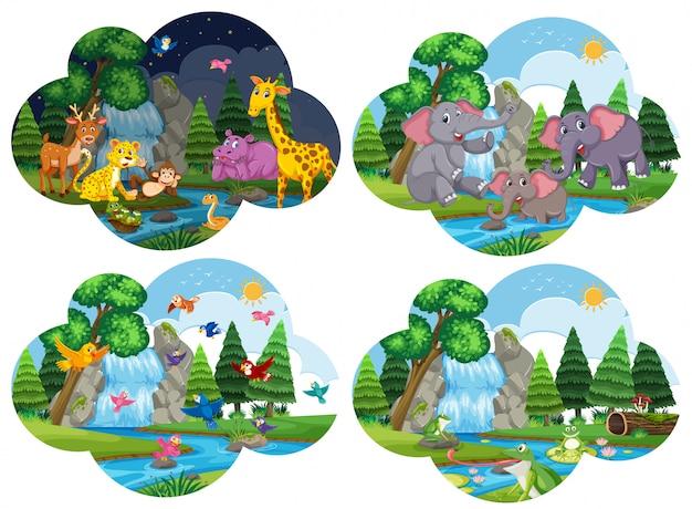 Conjunto de animais em cenas