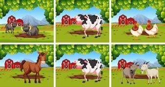 Conjunto de animais em fazendas