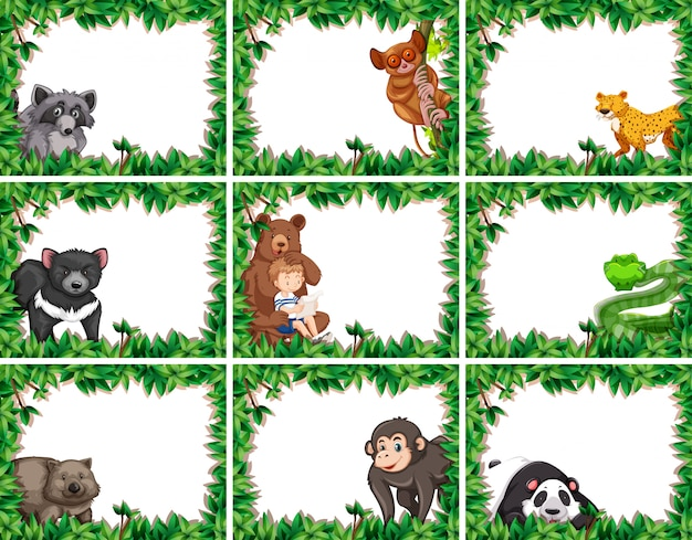 Conjunto de animais em quadros de natureza