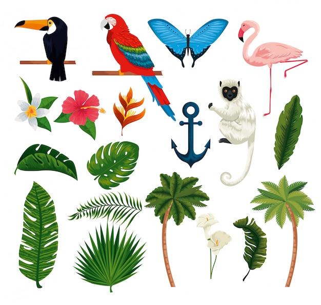 Conjunto de animais exóticos com folhas e palmeiras tropicais