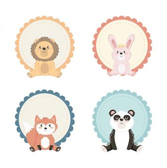 Conjunto de animais fofos com decoração de rótulo