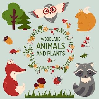 Conjunto de animais fofos. ilustração vetorial