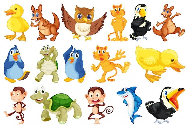 Conjunto de animais fofos no fundo isolado