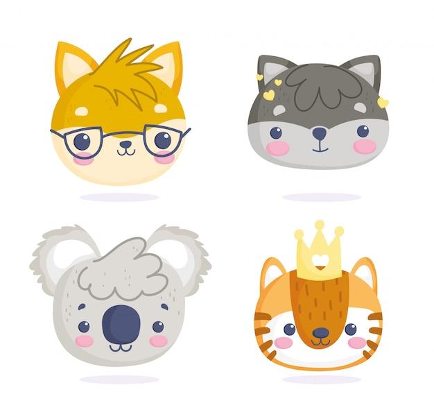 Conjunto de animais fofos, pequenos personagens de desenhos animados enfrenta gato guaxinim coala tigre