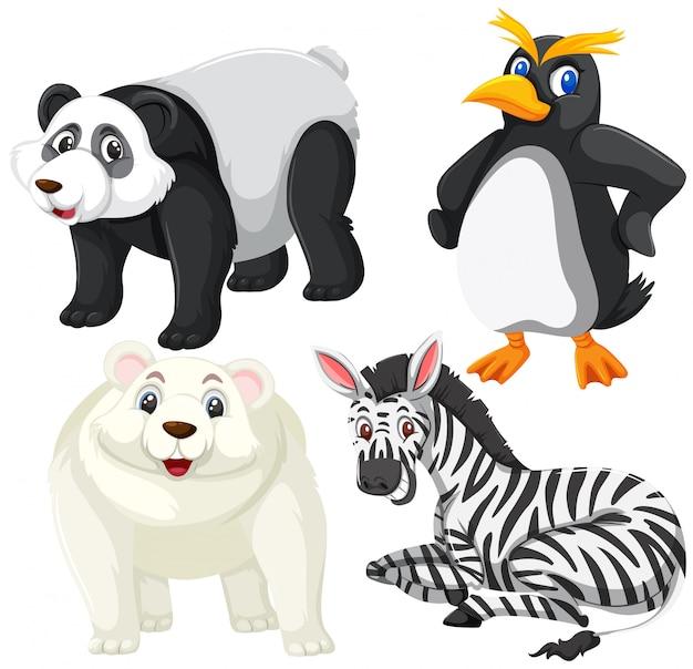 Conjunto de animais isoalted
