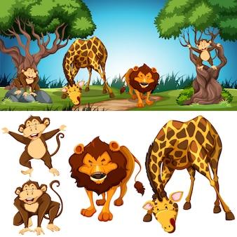 Conjunto de animais na cena da natureza