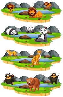 Conjunto de animais na natureza
