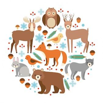 Conjunto de animais planos