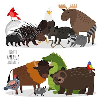 Conjunto de animais populares da américa do norte
