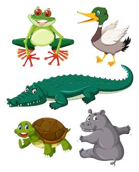 Conjunto de animais répteis