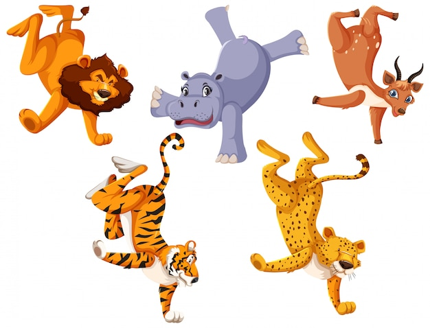 Conjunto de animais selvagens em pé por um lado