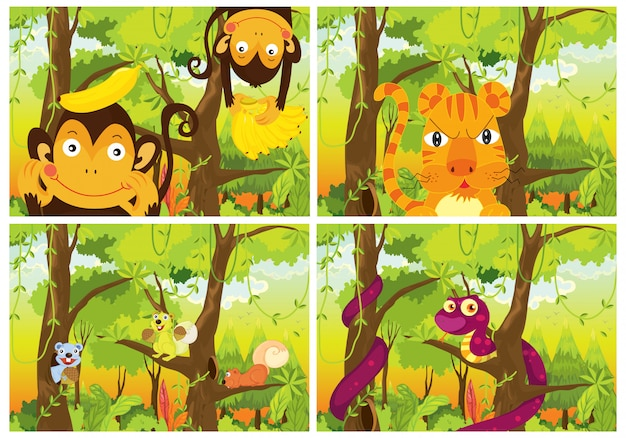 Conjunto de animais selvagens na floresta