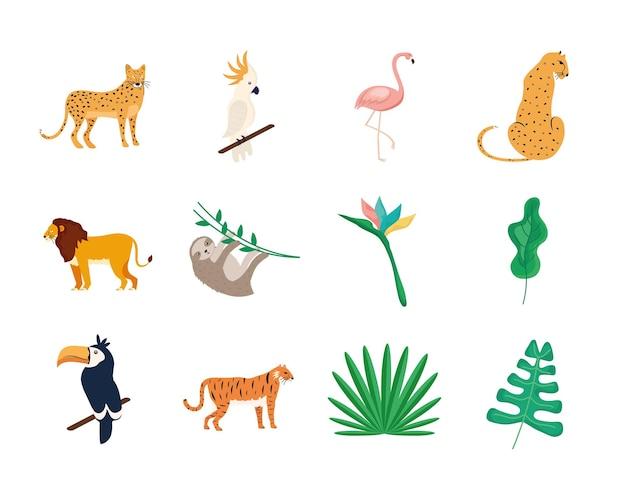 Conjunto de animais tropicais
