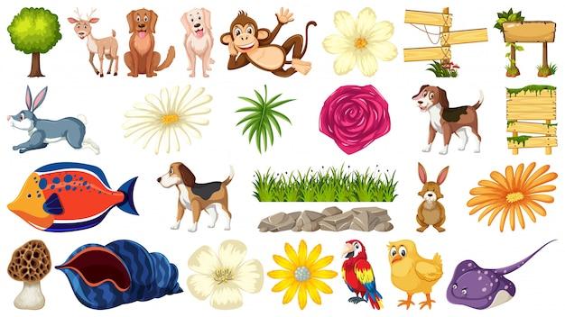 Conjunto de animal de estimação e natureza